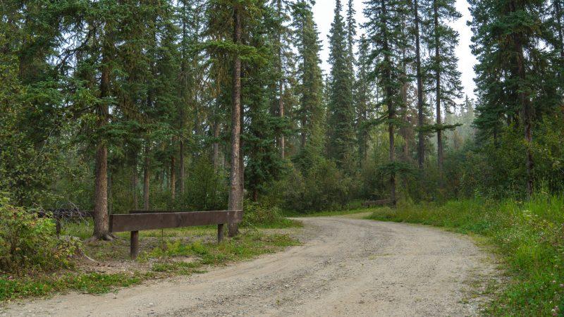 Free camp sites Inga Lake British Columbia