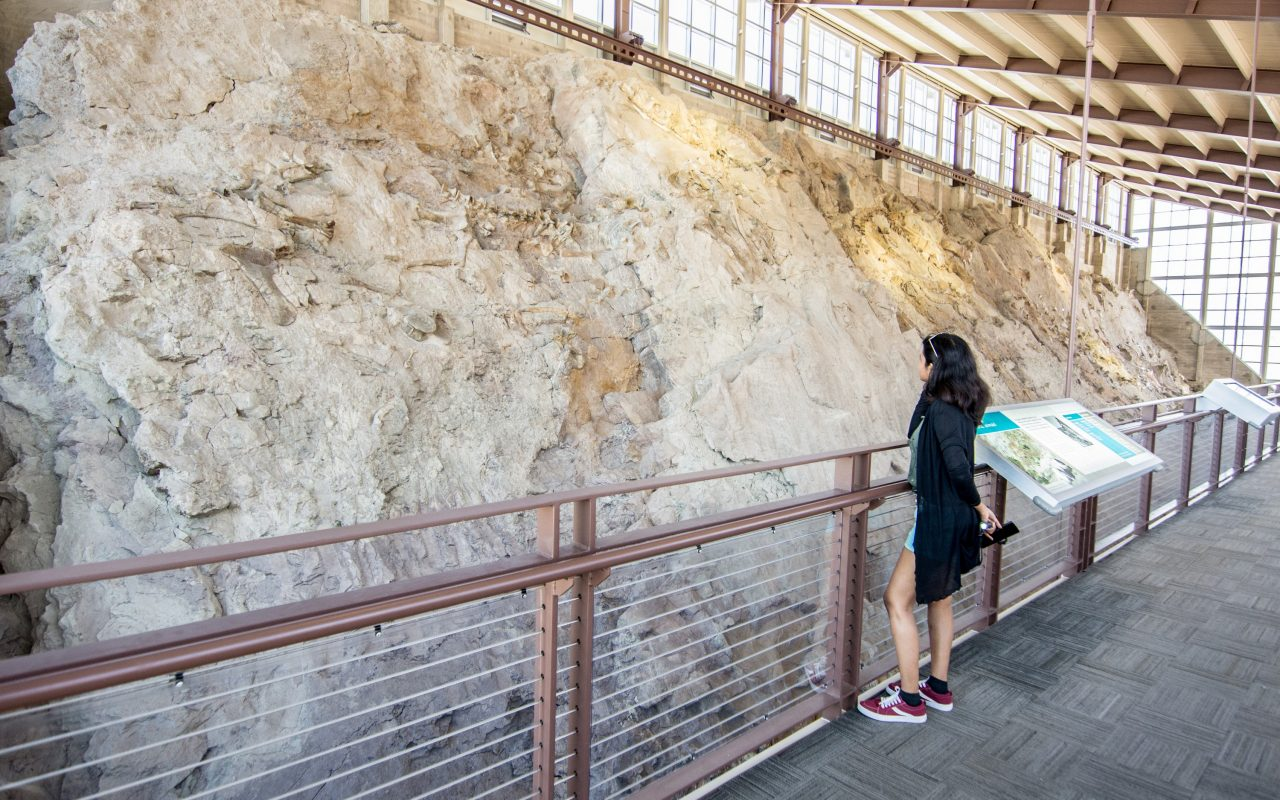 Explore Dinosaur fossils in Utah