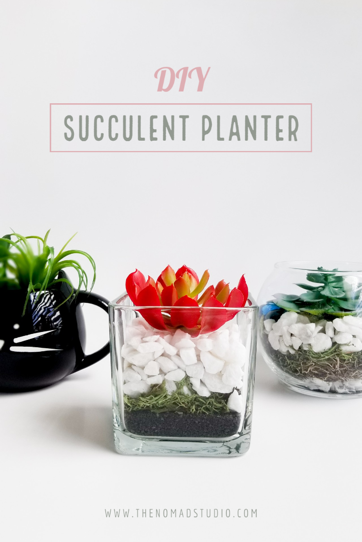 DIY Adorable Succulent planter
