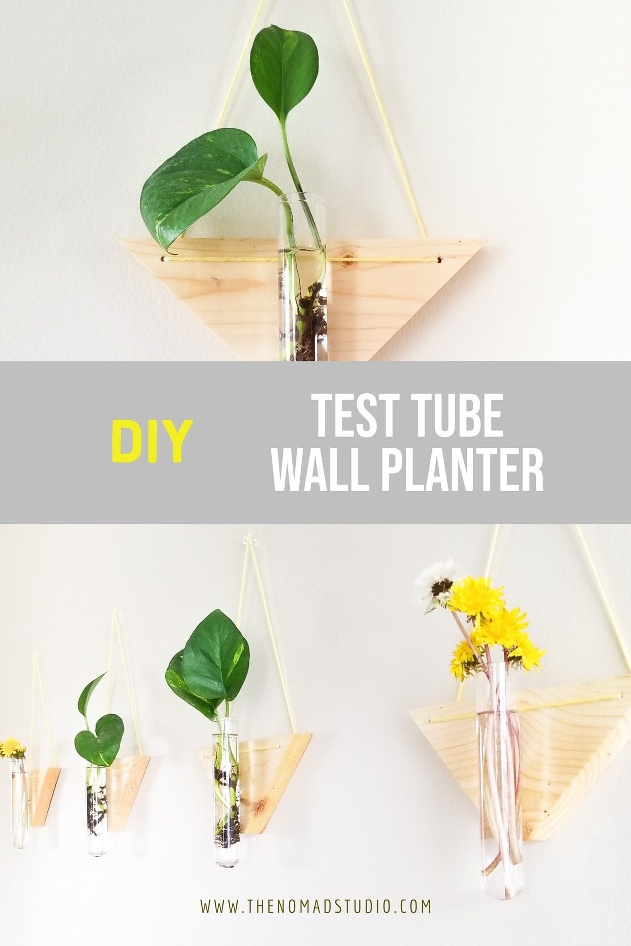 Test Tube Wall Planter