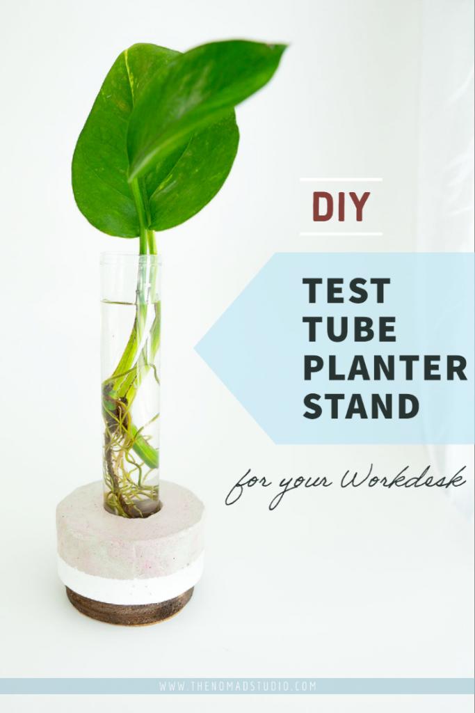Test tube Planter stand