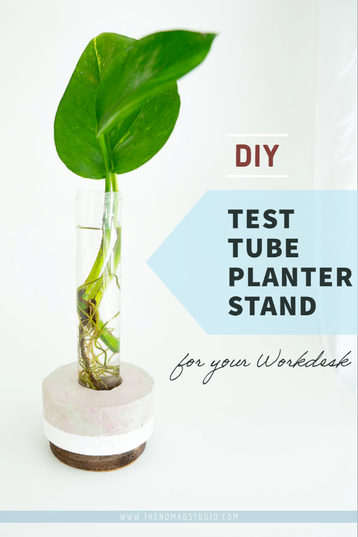 DIY Test tube Planter stand